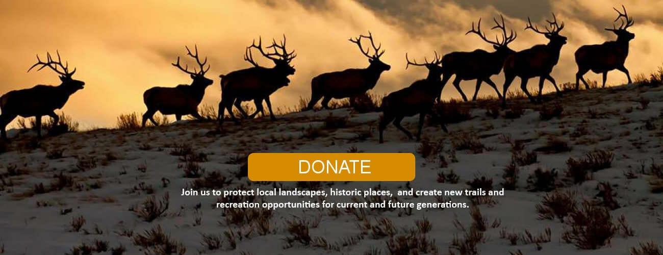 Membership-Donate